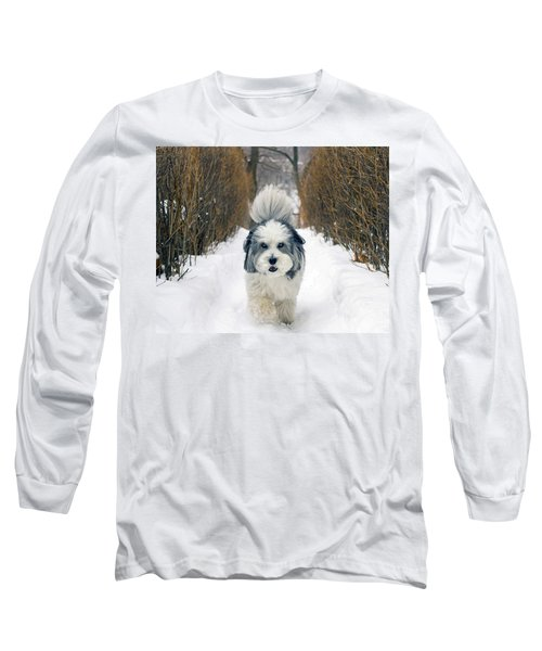 Doing The Dog Walk Long Sleeve T-Shirt by Keith Armstrong
