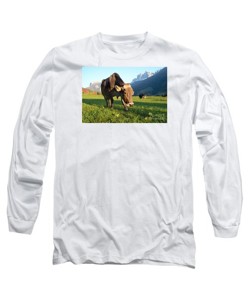 Dolomites Mountain Cow Close-up Long Sleeve T-Shirt by IPics Photography