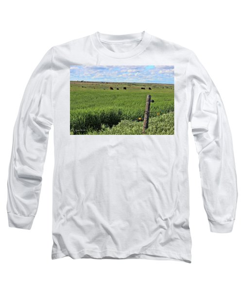 Don't Fence Me In Long Sleeve T-Shirt by Sylvia Thornton