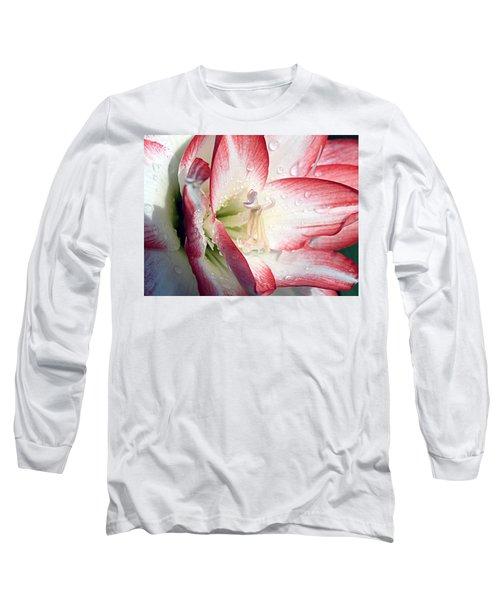 Double Amaryllis Long Sleeve T-Shirt