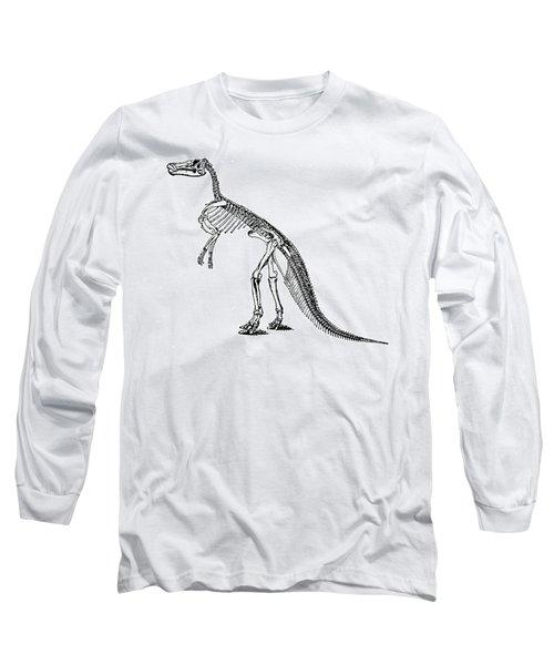 Duck-billed Dinosaur Long Sleeve T-Shirt
