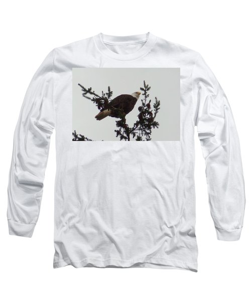 Eagle In A Tree Long Sleeve T-Shirt by Karen Molenaar Terrell