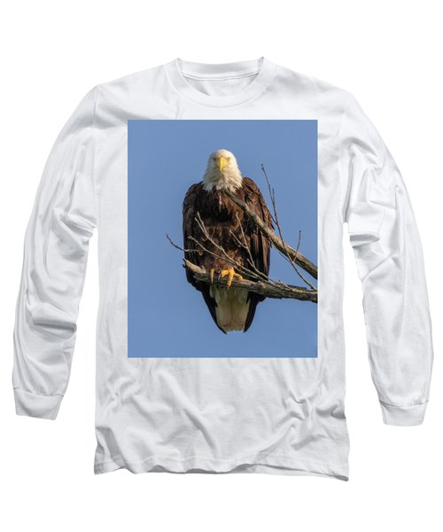 Eagle Stare Long Sleeve T-Shirt