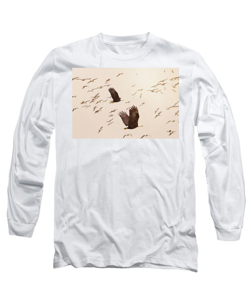 Eagles And Flock Of Seagulls Long Sleeve T-Shirt by Peggy Collins