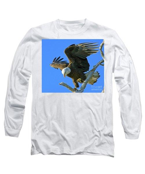 Eagle's Balance Long Sleeve T-Shirt