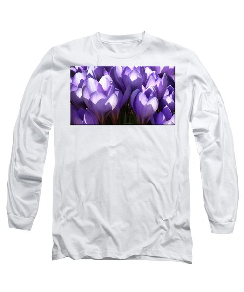 Early Crocus Long Sleeve T-Shirt by Mikki Cucuzzo