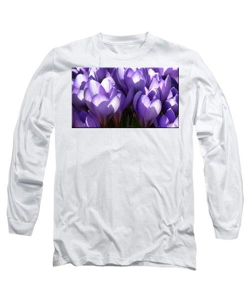 Early Crocus Long Sleeve T-Shirt