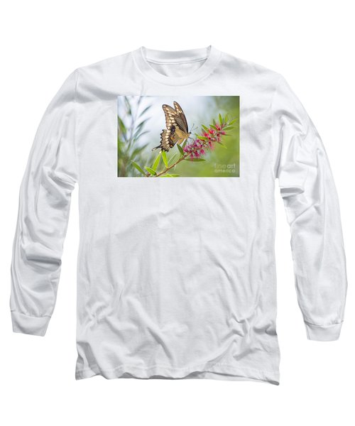 Eastern Tiger Swallowtail Butterfly On Bottlebrush Long Sleeve T-Shirt by Bonnie Barry