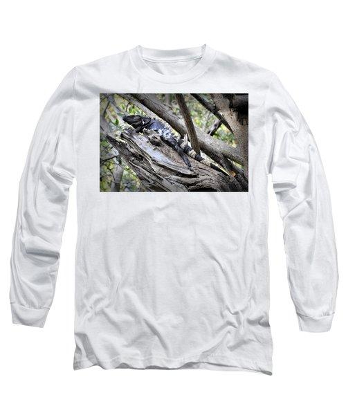 Long Sleeve T-Shirt featuring the photograph El Garrobo by Jim Walls PhotoArtist