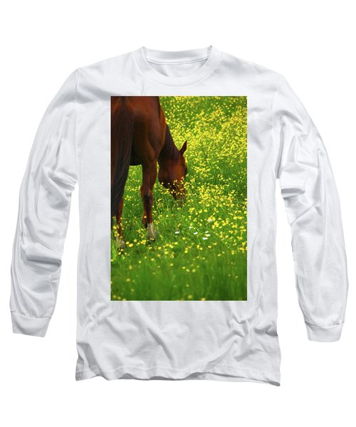 Long Sleeve T-Shirt featuring the photograph Enjoying The Wildflowers by Karol Livote