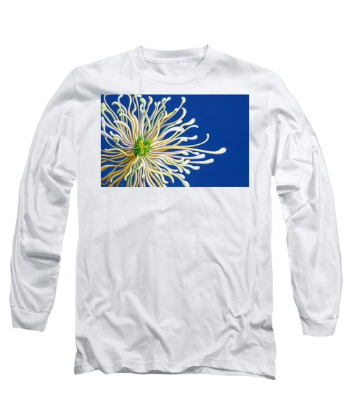 Entendulating Serene Blossom Long Sleeve T-Shirt