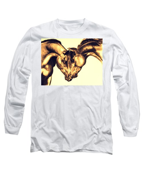 Equine Attraction Long Sleeve T-Shirt