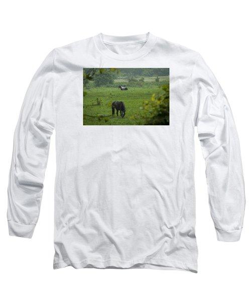 Equine Buddies Long Sleeve T-Shirt
