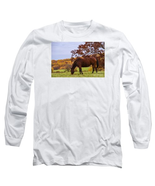 Fall And A Horse Long Sleeve T-Shirt by Rima Biswas
