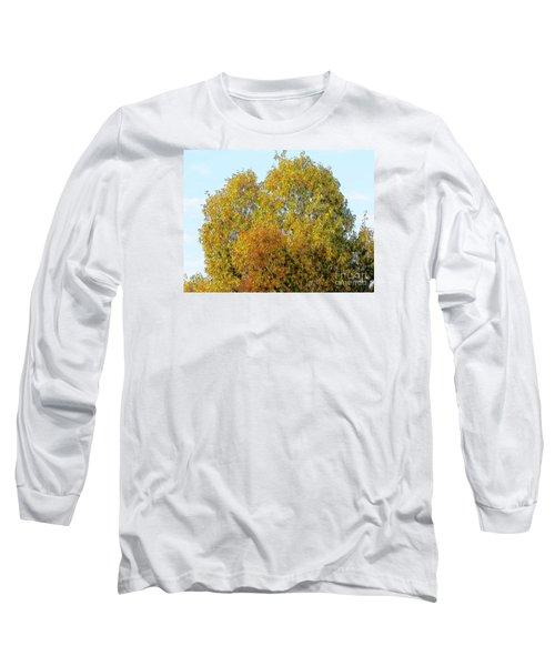 Fall Tree Long Sleeve T-Shirt by Craig Walters