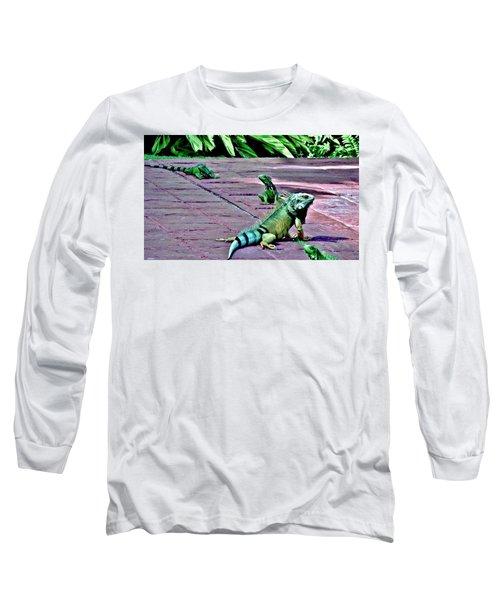 Family Of Iguanas Long Sleeve T-Shirt