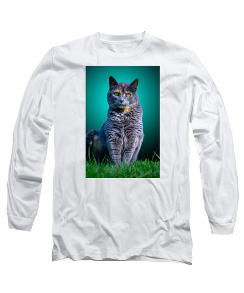 Feline Shine Long Sleeve T-Shirt by Brian Stevens