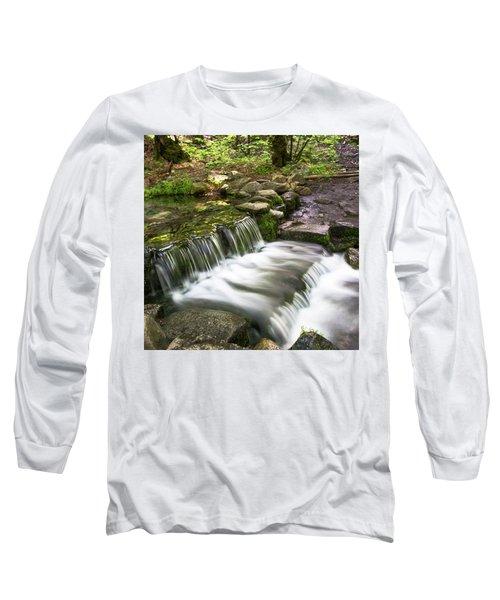 Fern Spring 4 Long Sleeve T-Shirt by Ryan Weddle