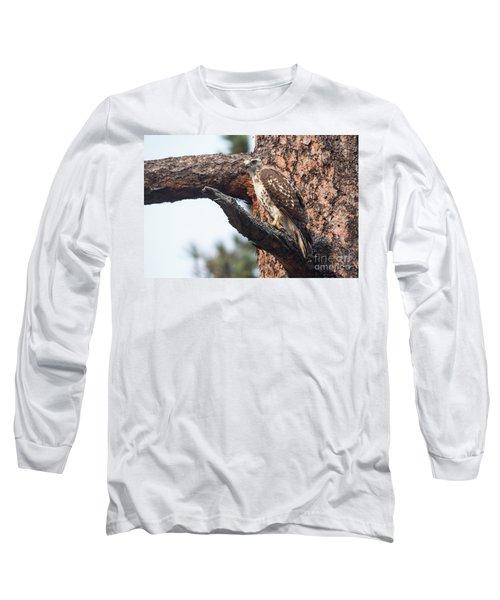 Ferruginous Hawk Long Sleeve T-Shirt