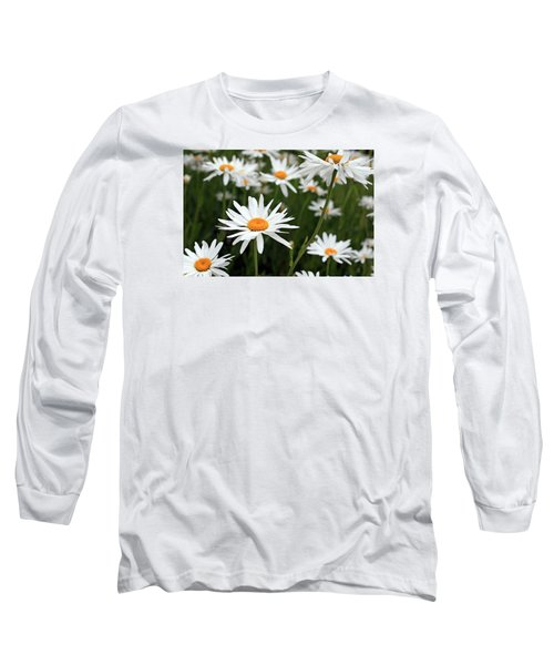 Field Of Daisies Long Sleeve T-Shirt by Dorothy Cunningham
