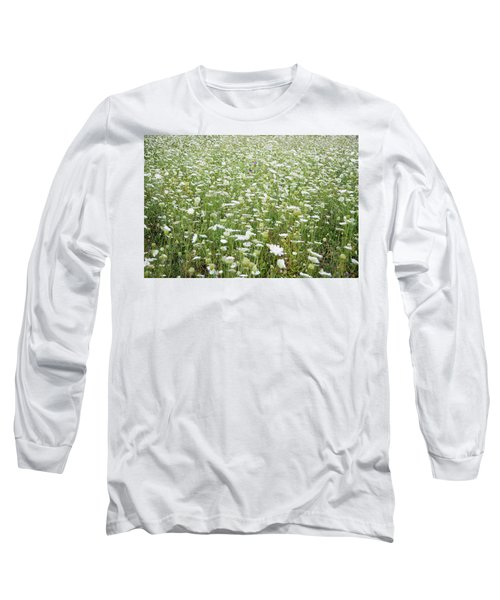 Field Of Queen Annes Lace Long Sleeve T-Shirt