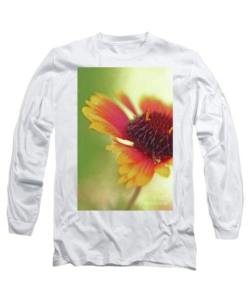 Firewheel Long Sleeve T-Shirt