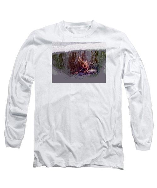 First Freeze Long Sleeve T-Shirt by Spyder Webb