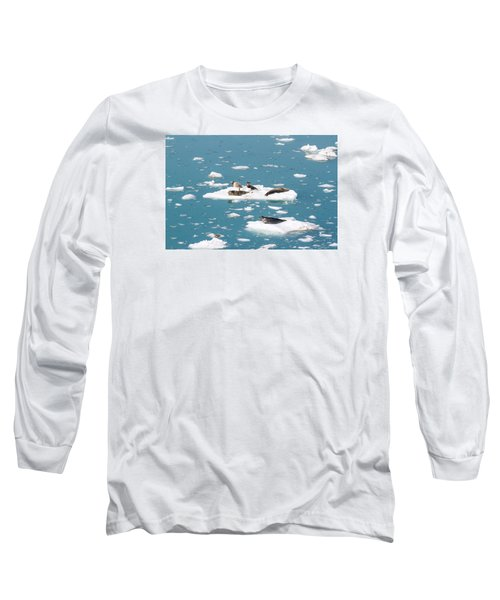 Five Habor Seals On Ice Flows Long Sleeve T-Shirt by Allan Levin
