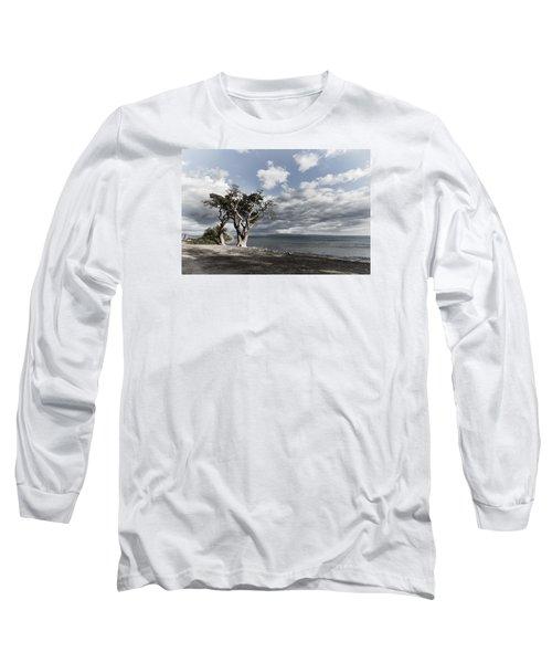 Fla-150717-nd800e-25953-color Long Sleeve T-Shirt by Fernando Lopez Arbarello