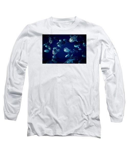 Fla-150811-nd800e-26096-color Long Sleeve T-Shirt by Fernando Lopez Arbarello
