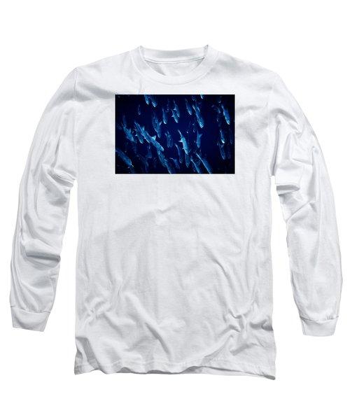 Fla-150811-nd800e-26105-color Long Sleeve T-Shirt by Fernando Lopez Arbarello