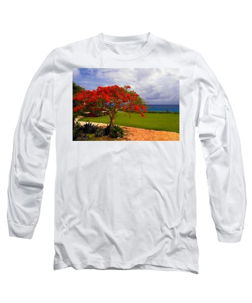 Flamboyant Tree In Grand Cayman Long Sleeve T-Shirt by Marie Hicks