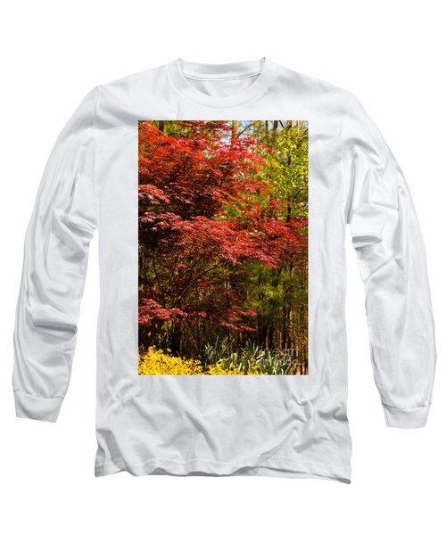 Flame In The Backyard Long Sleeve T-Shirt by Marilyn Carlyle Greiner