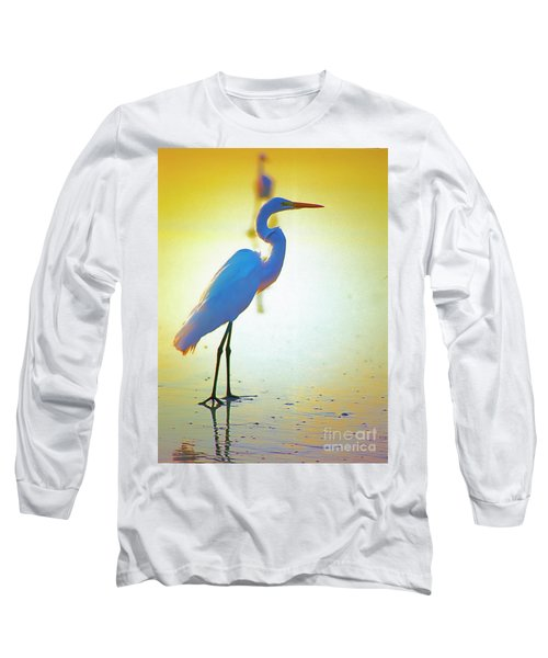 Florida Atlantic Beach Ocean Birds  Long Sleeve T-Shirt