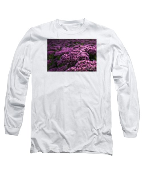 Long Sleeve T-Shirt featuring the photograph Sedum Flower Detail by Inge Riis McDonald