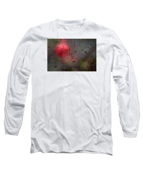 Flower Seen Through The Window Long Sleeve T-Shirt by Catherine Lau
