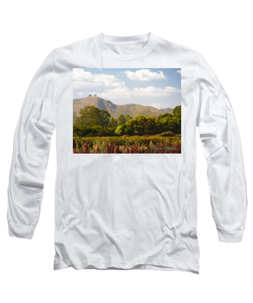 Flowers And Two Trees Long Sleeve T-Shirt by John A Rodriguez