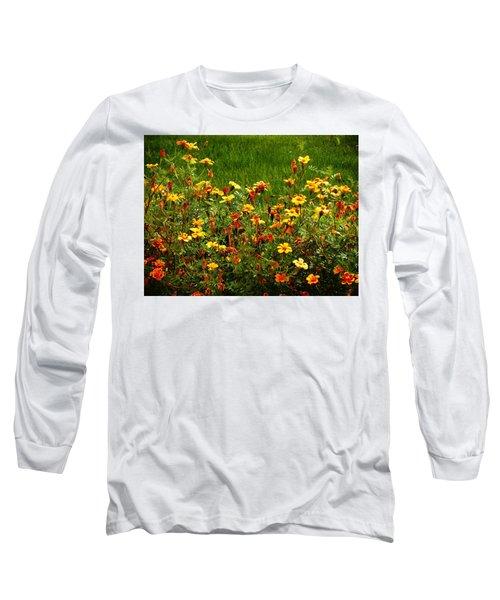 Flowers In The Fields Long Sleeve T-Shirt by Joseph Frank Baraba