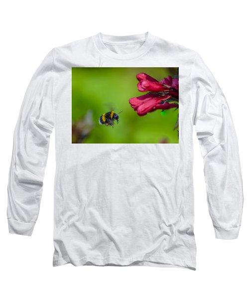 Flying Bumblebee Long Sleeve T-Shirt by Rainer Kersten