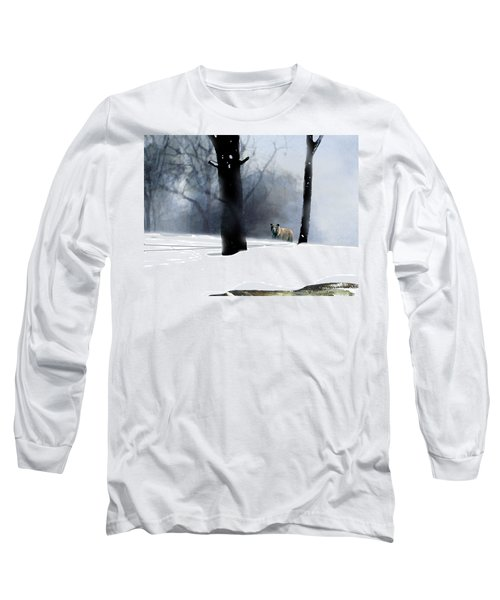 Foraging Grizzly Long Sleeve T-Shirt