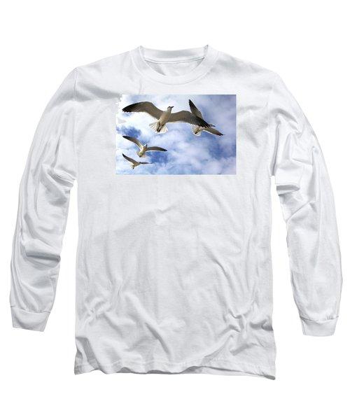Four Gulls Long Sleeve T-Shirt by Robert Och