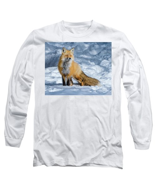 Fox On A Winter Afternoon Long Sleeve T-Shirt