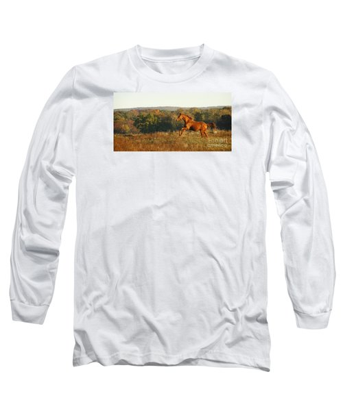 Freedom In The Late Afternoon Long Sleeve T-Shirt