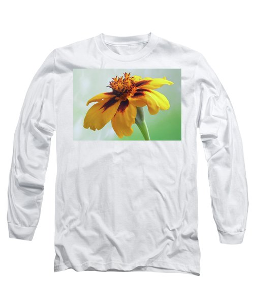 French Marigold Long Sleeve T-Shirt
