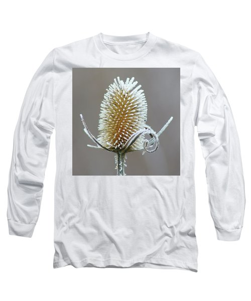 Frosted Teasel Long Sleeve T-Shirt by Nikolyn McDonald