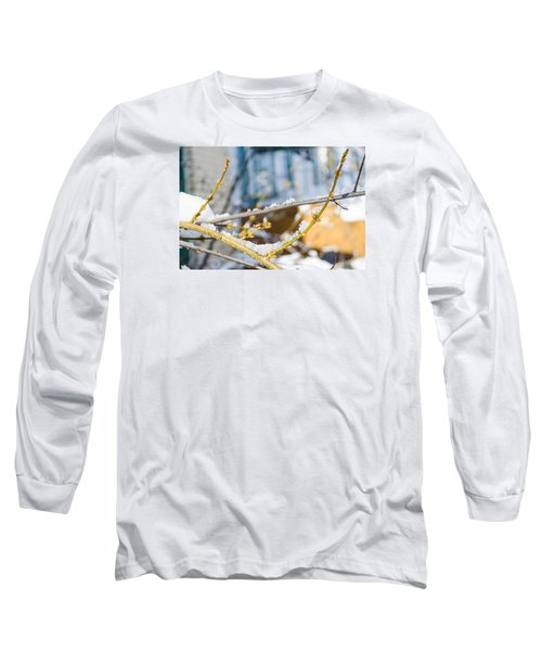 Frosty Branches Long Sleeve T-Shirt by Deborah Smolinske