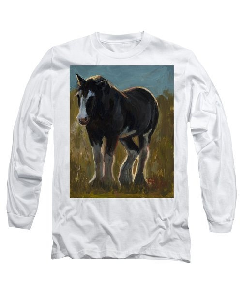 Frosty Morning Long Sleeve T-Shirt by Billie Colson