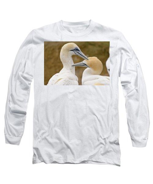 Long Sleeve T-Shirt featuring the photograph Gannet Pair 1 by Werner Padarin