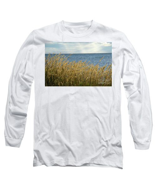 Glowing Grass By The Coast Long Sleeve T-Shirt