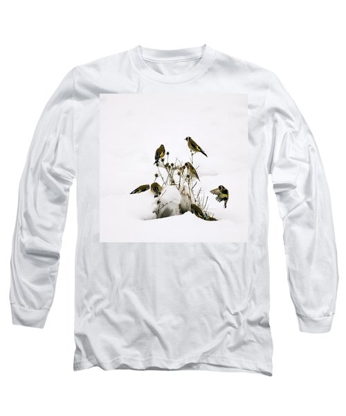 Gold Finches In Snow Long Sleeve T-Shirt